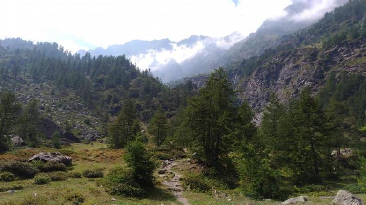 Sentiero per il rifugio Battaglione Alpini Monte Granero